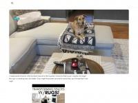 Cloclotron.net