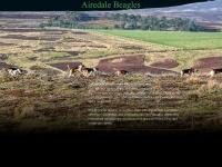 airedalebeagles.com