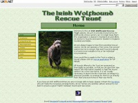 wolfhoundrescue.org.uk