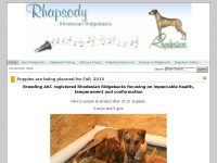 Rhodesian Ridgeback Puppies - Ridgeback puppies due in June, 2014