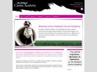 harlequin-agility.co.uk