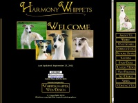 harmonywhippets.com