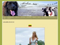 Home - ABSOLIUTI IDILE kennel