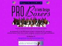 pro-boxers.com