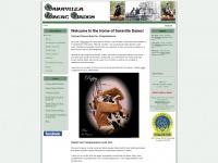 saravillagreatdanes.com