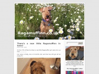 Ragamuffinn.co.uk