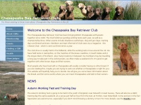 Chesapeakebayretrieverclub.co.uk