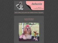 tutucin.com