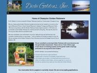 dichigoldens.com