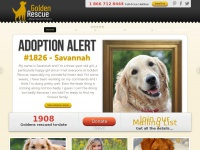 golden-rescue.net