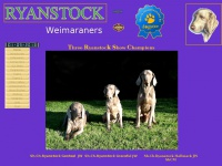 ryanstockweimaraners.com