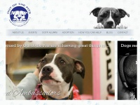 outofthepits.org