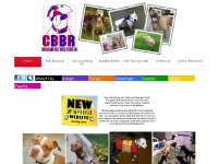Chicagolandbullybreedrescue.org