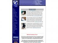 animal-advocates.org Thumbnail