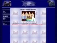 Torum.co.uk