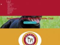 eastangliansbtclub.co.uk