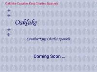 oaklake.co.uk Thumbnail