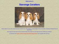 stavongacavaliers.co.uk Thumbnail