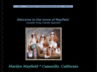 mayfieldcavaliers.com