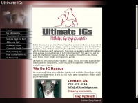 ultimateigs.com