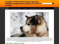 Canadian Urban Mush Puppy: Dogsled, Sleddog, weightpull harnesses for sale in Canada - Weight pull, sledding harness, dog sled harnesses for sale Ontario, Canada