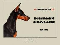diravallese.com