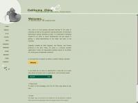 Cachins.org