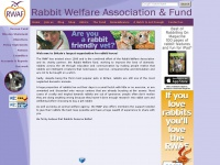 rabbitwelfare.co.uk