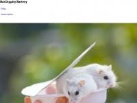 ratdippityrattery.com