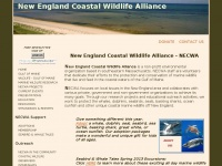 Necwa.org - NECWA - New England Coastal Wildlife Alliance Home Page