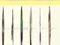 kidsridewild.com