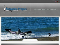 patagoniaproject.com