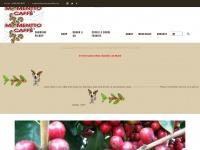 momenttocaffe.com