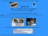 wakeupseattle.info