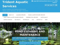 Tridentaquaticservices.co.uk