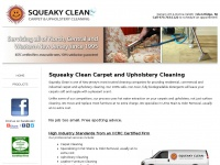 squeakycleancarpet.com