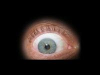 eyescuba.com