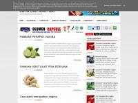 anekacaramanfaat.blogspot.com