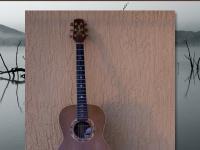 woodysblues.com