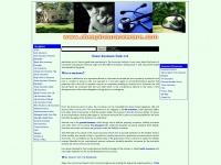 cheapinsurancecare.com
