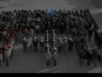 Tdcompanies.net