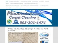 mountainviewcarpetcare.com