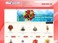 vizageshop.com