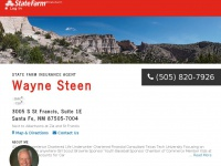 waynesteen.com