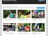 blacksoldierflyfarming.com