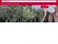 welfareassociation.org.uk