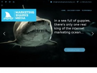 marketingsharksmedia.com