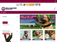 all-about-bullmastiff-dog-breed.com