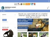 all-about-siberian-husky-dog-breed.com