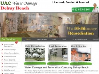 waterdamagedelraybeach.org Thumbnail